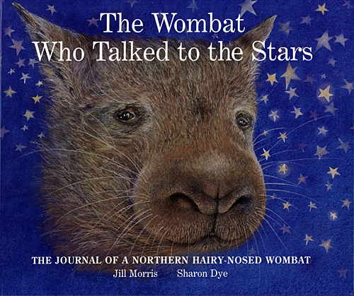 northern-hairy-nosed-wombat-01